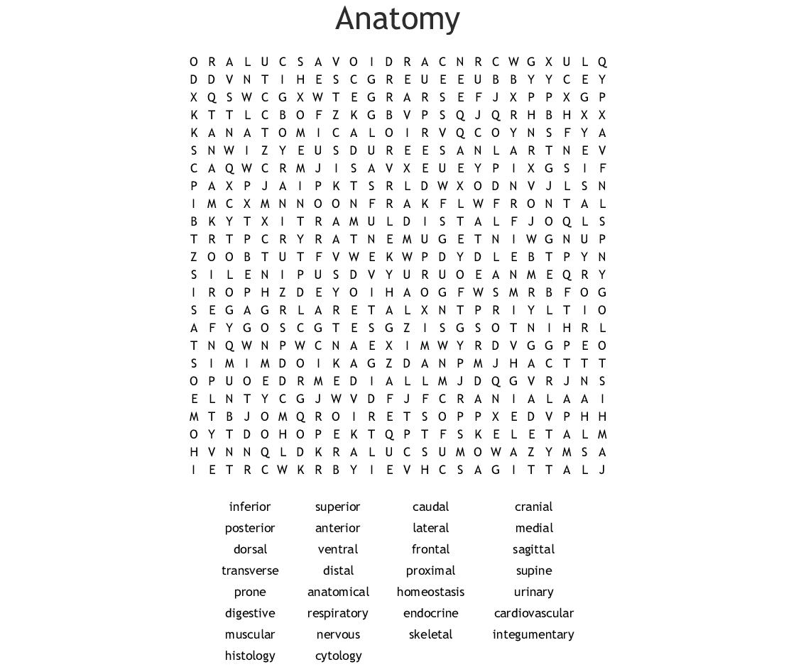 Anatomy Word Search - Wordmint