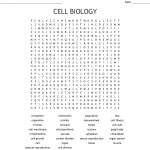 Cell Biology Word Search   Wordmint