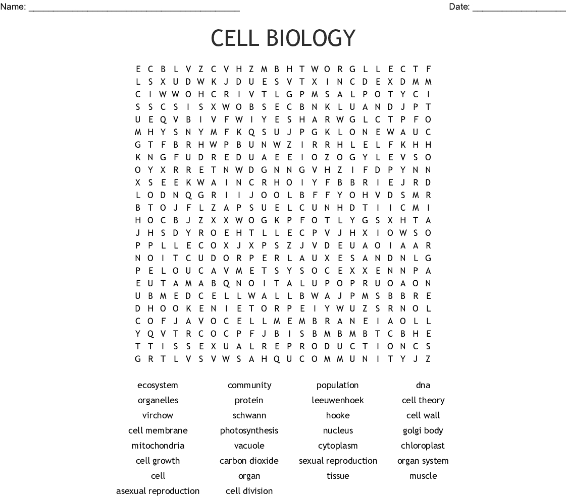 Cell Biology Word Search - Wordmint