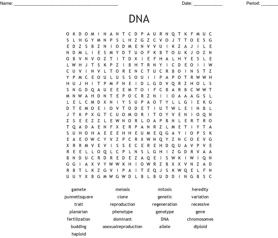Dna Word Search Worksheet | Printable Worksheets And