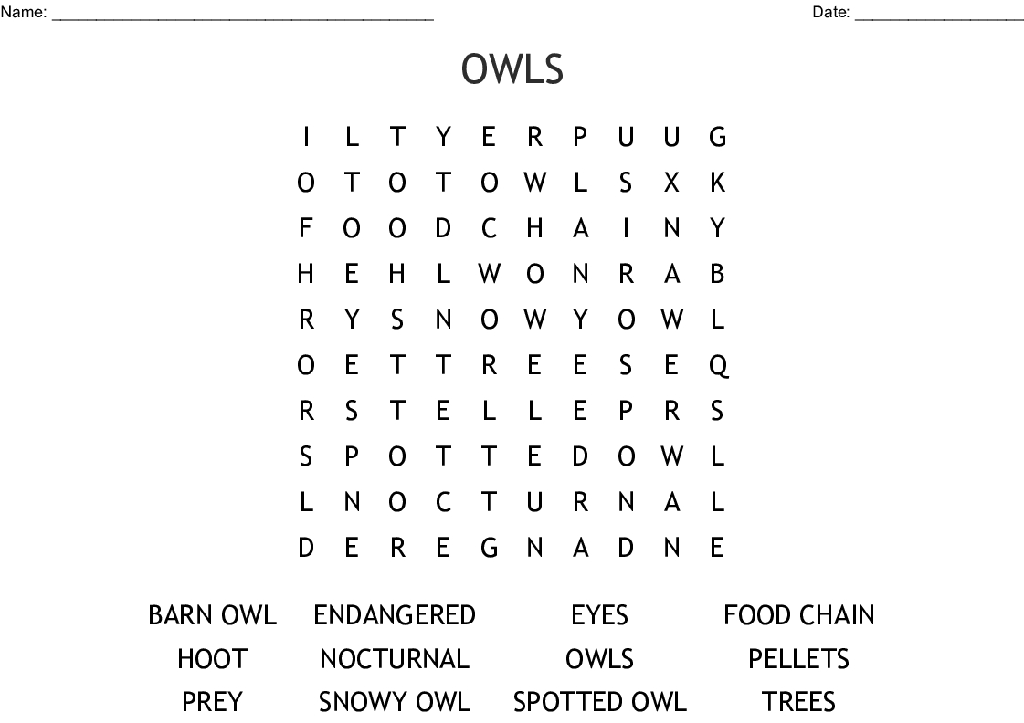 Owls Word Search - Wordmint