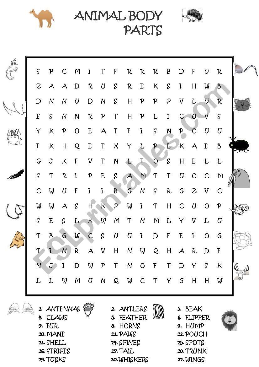 Animal Body Parts Wordsearch - Esl Worksheetguveri