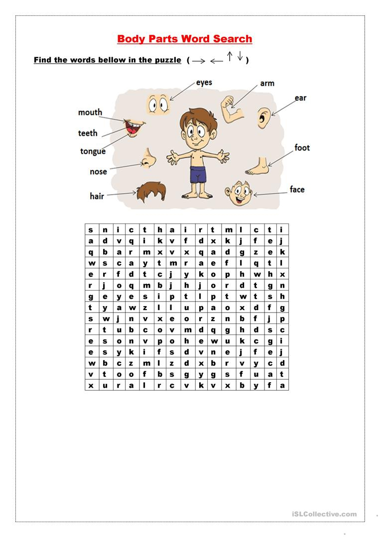 Body Parts Wordsearch - English Esl Worksheets For Distance