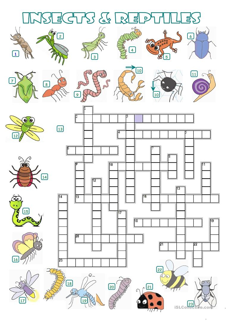 Crossword - Insects And Reptiles - English Esl Worksheets