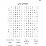 Life Cycles Word Search   Wordmint