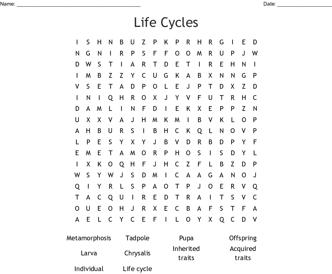 Life Cycles Word Search - Wordmint