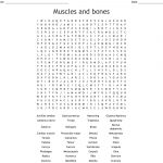Muscles And Bones Word Search   Wordmint