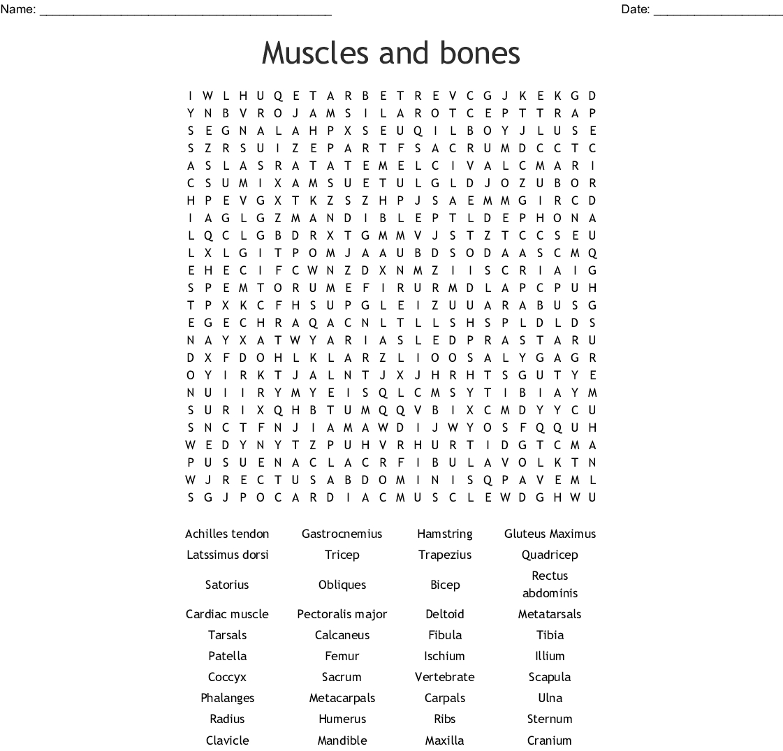 Muscles And Bones Word Search - Wordmint