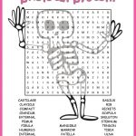 No Prep Skeletal System Activity   Human Skeleton Word