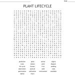 Plant Lifecycle Word Search   Wordmint