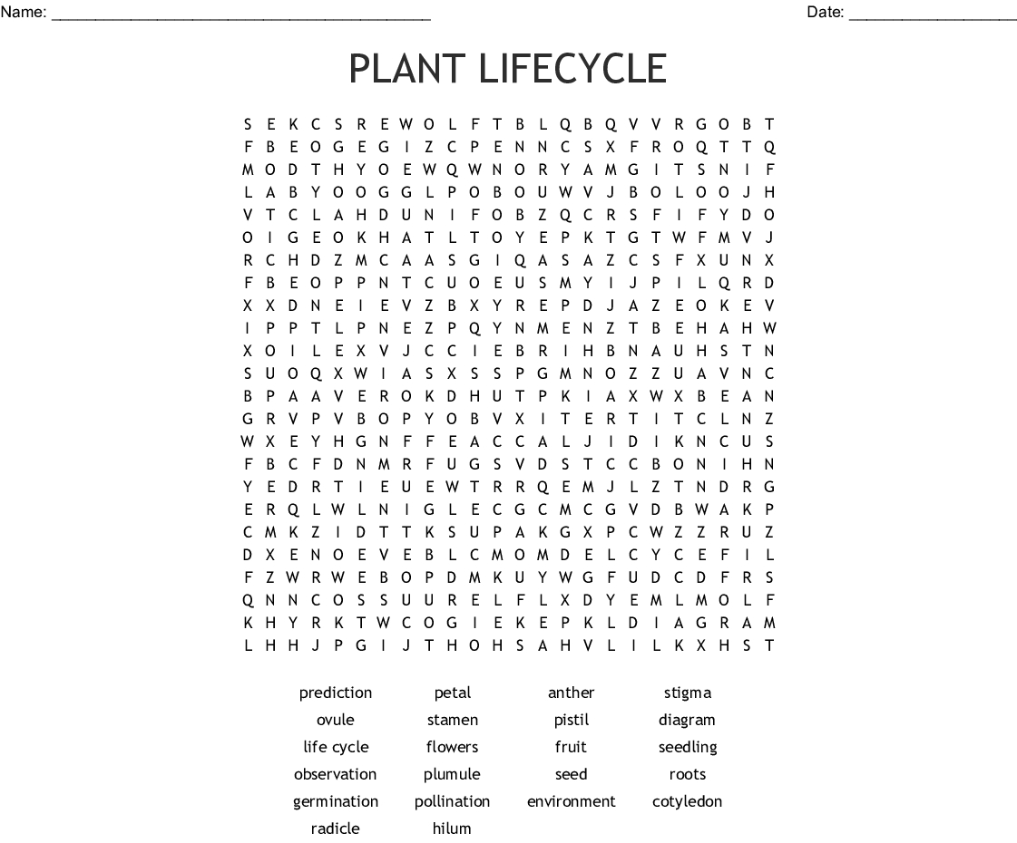 Plant Lifecycle Word Search - Wordmint