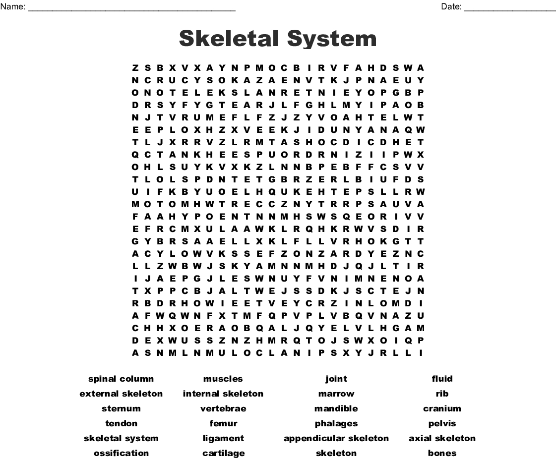 Skeletal System Word Search - Wordmint