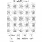 Skeletal System. Word Search   Wordmint